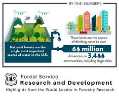 """""""Through the month of June we want to recognize forests for providing so many Americans with clean drinking water. Agriculture Facts, World Water Day, Forest Service, Research And Development, World Leaders, National Forest, Drinking Water, Community, Forests"""