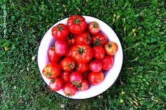 Jak zrobić idealny sos pomidorowy?