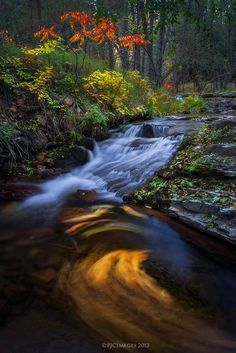 Unwinding by Peter Coskun Nature Photography on 500px