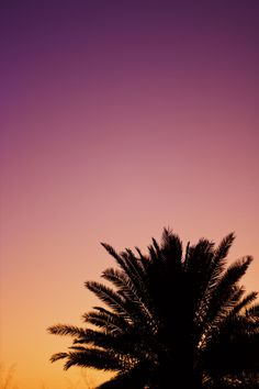 Sun Wallpaper - iPhone Background