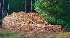 Felled-tree-shaped woodpile. By Alastair Heseltine, Vancouver, BC. alastairheseltine.com