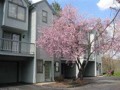 15 Village View Ter, Meriden, CT, Connecticut  06451, Meriden real estate, Meriden home for sale