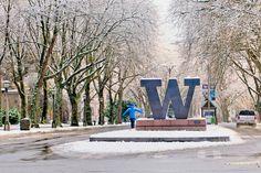 University of Washington – Seattle: Admission Tips and Answers