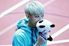 Tao is kissing a panda stuffie toy~! keke Tao oppa may i kiss the panda after you~? I will give it to you and you may kiss it again~ (keke my plan for an indirect kiss~ keke) Exo Tao, Park Chanyeol, Kpop Exo, Rapper, Huang Zi Tao, Kim Minseok, Xiuchen, Little Panda, Kung Fu Panda