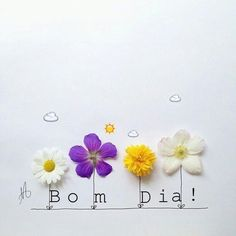 Good Morning People, Special Good Morning, Good Afternoon, Happy Day, Flower Art, Instagram, Creative, Prints, Blog