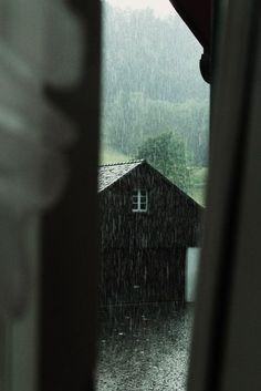 Дождь/ Rain