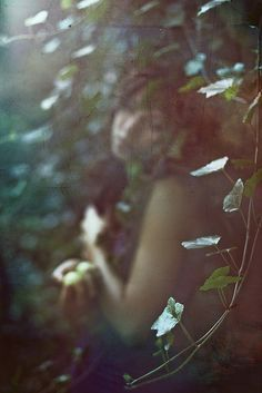 spirit of wonder | by nikaa