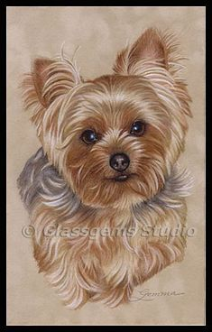 paintings of yorkies | Yorkshire Terrier - Painting - Nature Art by Gemma Gylling #yorkshireterrier