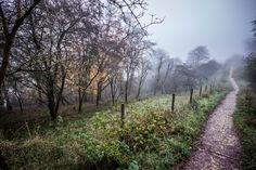 https://flic.kr/p/pVXb1t | Path from misty Ivinghoe