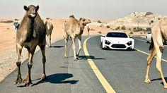 Desert driving, the United Arab Emirates....