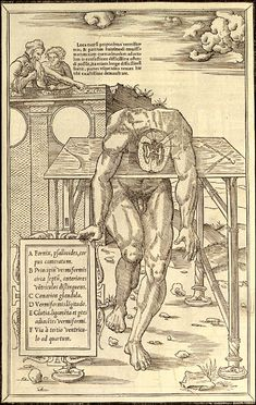Draped over a table, an anatomical figure displays a cross-section of his brain while touching a frame that holds captions. In the background, spectators observe from atop a fanciful parapet. To cut costs, Estienne took some of his illustrations from non-anatomical books, replacing a section of the woodblock with an insert that depicted the body's interior. Paris, 1546. Woodcut. National Library of Medicine. Charles Estienne (1504-ca. 1564) [author] Étienne de la Rivière (d. 1569)…