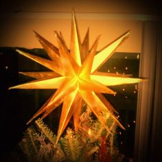 DIY Moravian Star tree topper.  I used this as a guide: http://mocoloco.com/fresh2/2010/12/20/diy-morivian-star-by-schindlersalmeron.php with gold spray paint.