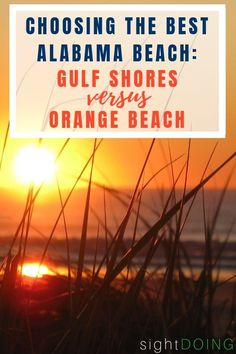 The Orange Beach vs Gulf Shores debate doesn't have a one-size-fits-all solution. Get the right spot for you with these comparisons for any travel style. Cruise Vacation, Vacation Trips, Vacation Spots, Vacation Ideas, Alabama Gulf Coast Zoo, Gulf Shores Alabama, Alabama Vacation, Alabama College, Alabama Football