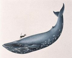 глаз кита рисунок - Поиск в Google