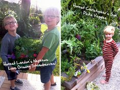 Create An Edible Container Garden With Kids - Design & DIY - Honestly... The Honest Company Blog