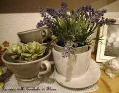mini succulent  and lavender ~ weblink to super cute minis.