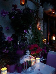 """Draussen in meinem """"zweiten Wohnzimmer"""" -dem Balkon. Ende Juli 2017 Christmas Tree, Holiday Decor, Home Decor, Balcony, Living Room, Deco, Teal Christmas Tree, Decoration Home, Room Decor"""
