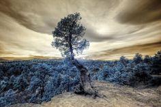 Palmer Park, Colorado Springs, CO  - http://earth66.com/infrared/palmer-park-colorado-springs/