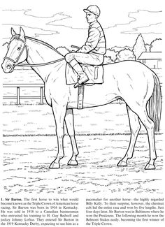 Great Racehorses: Triple Crown Winners and Other Champions Coloring Sheets Monkey Coloring Pages, Sports Coloring Pages, Fish Coloring Page, Horse Coloring Pages, Coloring Book Art, Printable Adult Coloring Pages, Colouring Pages, Coloring Sheets, Wild Animals Photography
