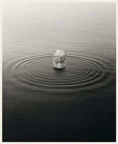 Chema Madoz, Untitled, 51 x in / 130 x 110 cm. Silver printing on Ilford paper. Poesia Visual, Creative Photography, Caricature, Silver Rings, Engagement Rings, Painting, Jewelry, Poetry, Illustrations