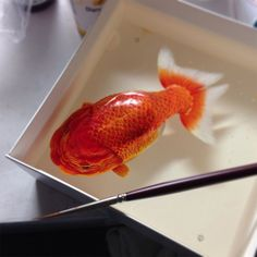 Alive Without Breath: Three Dimensional Animals Painted in Layers of Resin by Keng Lye