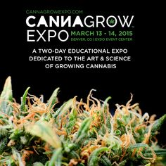 A two-day educational expo dedicated to the art & science of growing cannabis.   www.CannaGrowExpo.com for details and to register! 18+ to Enter. Open to All.  #cannabiscommunity #cannabis #growcannabis #growweed #danknugs