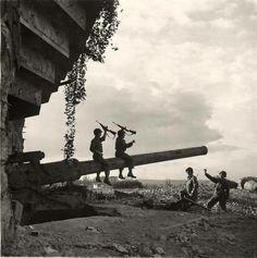 Saint-Marcouf, june 1944.