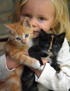 Three little cuties !!