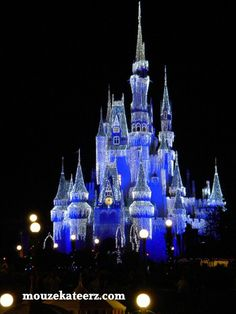 Fall or Christmas holidays...when is the best time to visit Walt Disney World?
