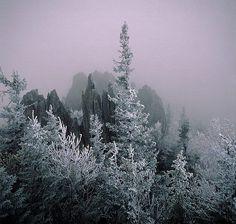 Столбы выветривания на плато Мань-Пупу-нёр (Коми)