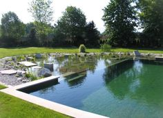 Natural Pools or Natural Swimming Ponds