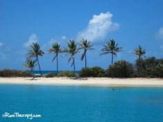 Saltwhistle Bay Beach, Mayreau - gorgeous beach in the Grenadines. Click to read more!