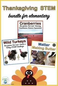 """Save money by purchasing this STEM bundle for your students. Do one STEM activity a week and have students asking for more! Read what one happy teacher wrote, """"Hands down one of the best activities I have purchased on TPT! My students loved this!"""" #ThanksgivingSTEM #elementarystemactivities #scienceexperiments Science Lessons, Science Experiments, Sixth Grade, First Grade, Teaching Kindergarten, Teaching Resources, Stem Science, Mad Science, Text Features"""