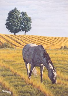 Horse painting by Judy Lalingo