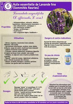 Huile essentielle de lavande fine (Lavandula angustifolia) : propriétés et…