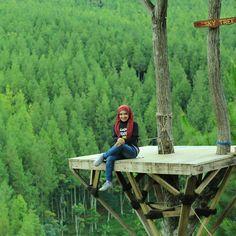 Sky tree the lodge maribaya bandung west java INDONESIA Amazing!!