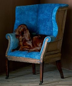 Ralph Lauren home. Wing back chair..with beautiful spaniel