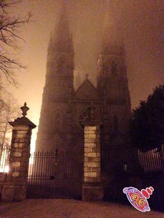 Finbarrs Cathederal in Cork, great shot!
