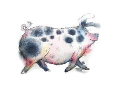 Limited edition print  Tilly the pig