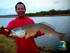Que tal uma viagem para #aquaforthotel? Aproveite para conhecer nossas pescarias.  Confira as ofertas: http://www.aquafort.com.br/promocoes Vem pescar! 👉🐠🐟🎣 @aquafort_hotel @fishtvoficial @funpesca @phofish @fishing.club #aquafort #pescaesportiva #fishtv #ceará #nordeste #fishing #pescaria #camocim