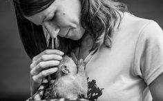 <p>Much needed help came about in the form of Josie Du Toit, an animal-loving volunteer whose passion grew into a career with Vervet Monkey Foundation in South Africa</p>
