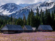 Mount Rainier, Mountains, Nature, Photos, Travel, Beautiful, Naturaleza, Viajes, Trips