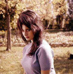 Sophia in Boccaccio '70
