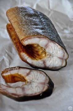 Ob man sich die Würmer beim Menschen anstecken kann