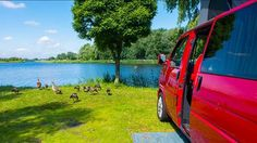 Probably the best campsite I've ever stayed at. #vanlife #vwt4 #t4 #netherlands #amsterdam Het Rietveen in Landsmeer, 15 minutes by bus from central Amsterdam. So peaceful! #camping #ducks #lake