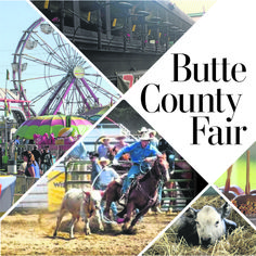 Butte County Fair Cover for a special Tab section in the Chico Enterprise-Record Web Design, Page Design, Layout Design, Print Design, Magazine Design, Newspaper Design Layout, Scrapbook Sketches, Scrapbook Layouts, Newspaper Background
