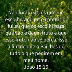 João 15:16