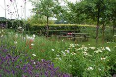 Weelderige border bij een fruitboomgaard Planting Plan, Back Gardens, Garden Landscaping, Woodland, Angel, Landscape, Inspiration, Notes, Design