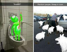 7. La rana René  tomando un baño y un tipo con un problema de ovejas.