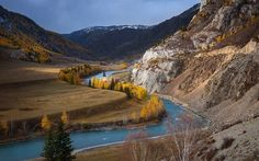 Download wallpapers mountain river, autumn, mountain landscape, yellow trees, forest, USA